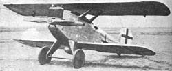 Zeppelin Lindau D1
