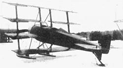 Saveljev Quadriplane