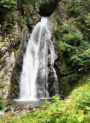 飛騨大鍾乳洞近くにある銚子の滝。 高さ約25mで林道から滝壷まで行ける。