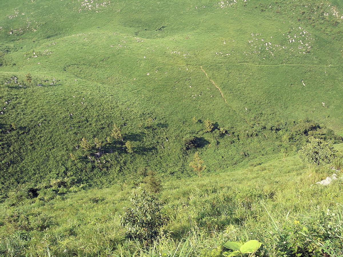 道路から見下ろす、帰水ウバーレ。 ウバーレとは、ドリーネより幅広い吸込み谷で、この谷も流れ込む水は地下にしか通じていない。