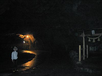 入り口からの空間は広く、すぐに神社がある。  「生目八幡」眼病にご利益あり。