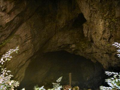 天然記念物の石柱が建つ洞口