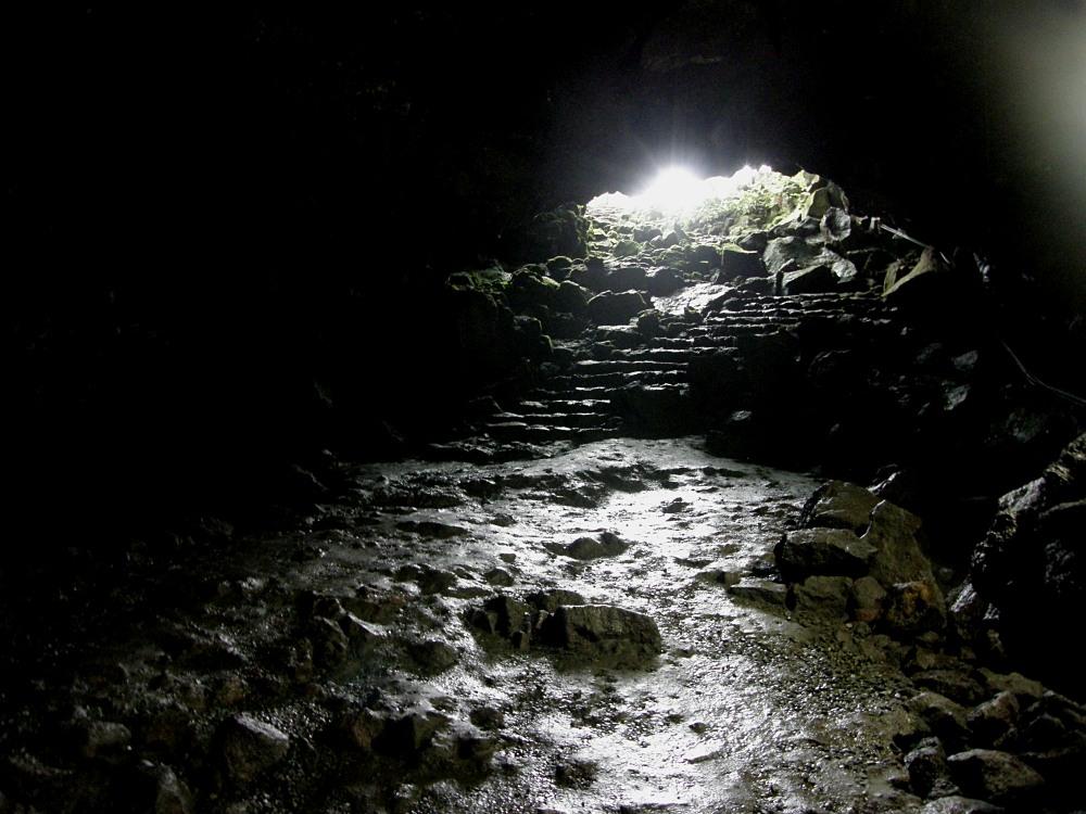 内部から洞口を望む。 まさに地下室から地上への出口状態。