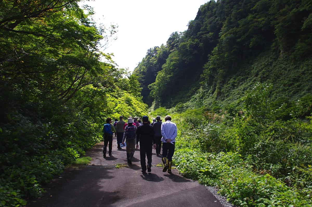 徒歩で林道終点に向かう