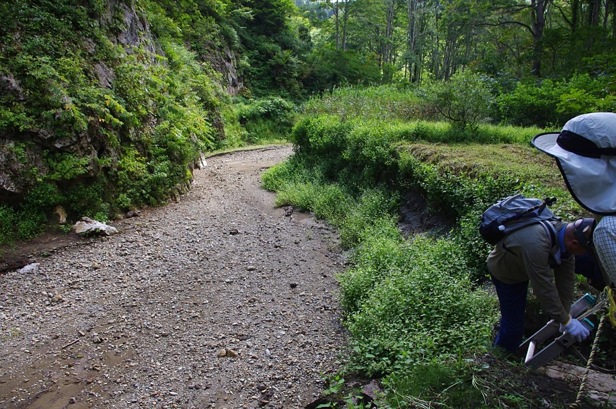川の反対側も上流。 水が流れていたら、さぞ不思議な光景だろう。 川岸は2-3mの段丘となっていて、ハシゴで降りる。