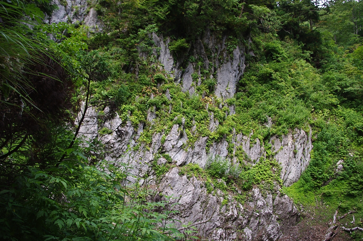 ドリーネということで、草原のすり鉢をイメージしていたが、岩壁に囲まれている。