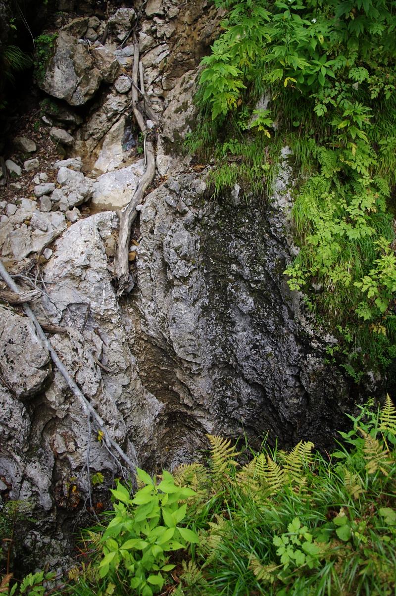 これが、白蓮洞の洞口。 足場が狭く、穴がすっぱり垂直なので、写真の撮りようがない。