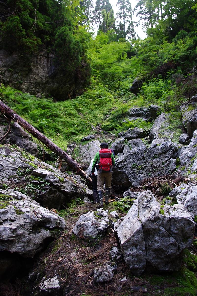 帰りはまた、あのドリーネの底を横切り側壁の崖を登り返す。
