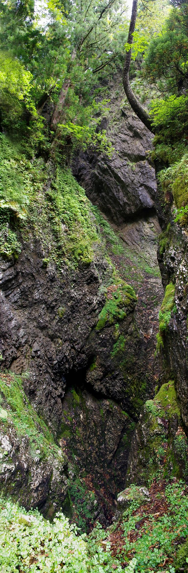 千里洞洞口上方の全景。 上からの沢ルンゼがそのまま洞内に繋がっている。 大雨が降ったら、まさに排水口と化すだろう。