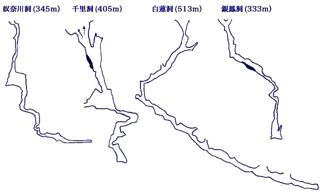 深さ日本第1位から第4位までの鍾乳洞が、マイコミ平の狭い範囲に存在している。