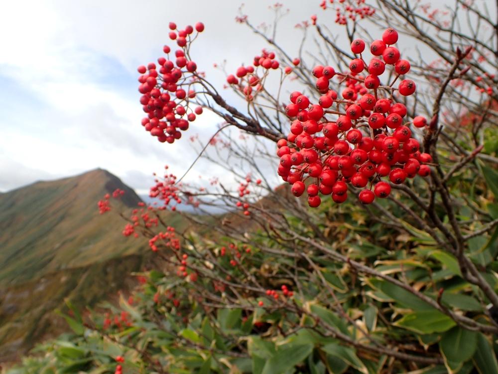 2015年10月 谷川岳
