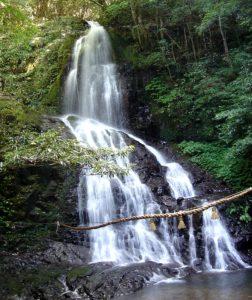 秋芳白糸の滝
